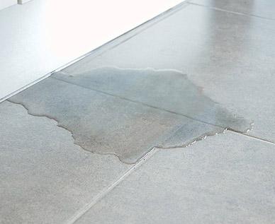 water Leak in basement